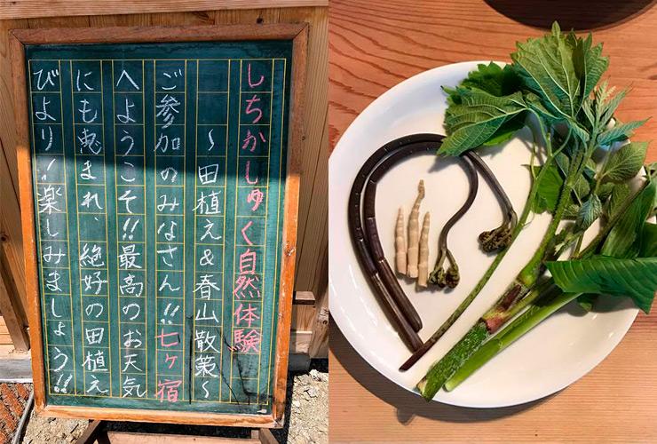 田植え体験&春山散策 七ヶ宿くらし研究所