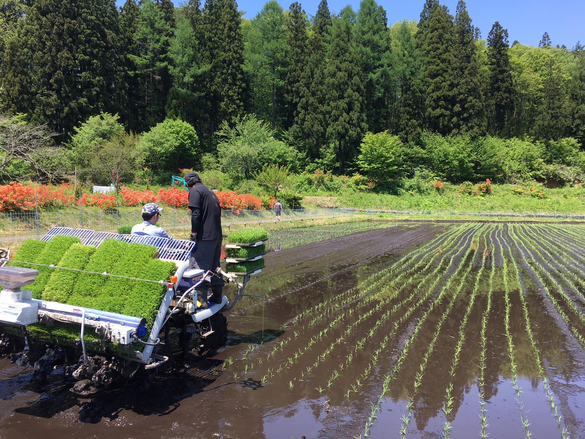 宮城県七ヶ宿町にて農業体験してきました!