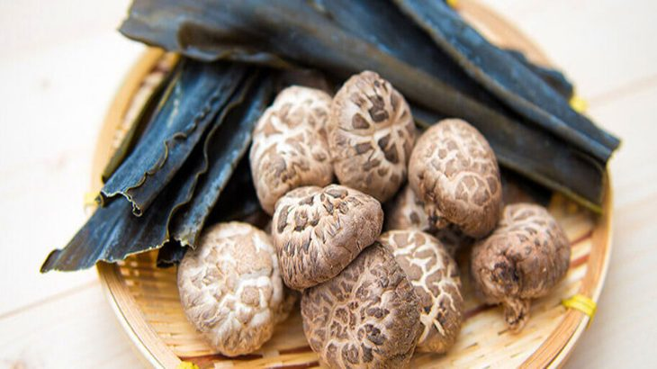 原木しいたけできるまで 植菌~収穫